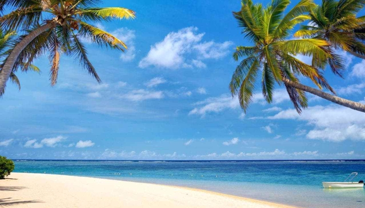 Mauritius---Beaches---Tropical-beach-xlarge
