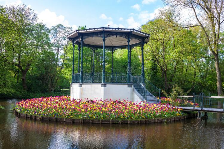 pond-tulips-vondelpark-amsterdam-34726719